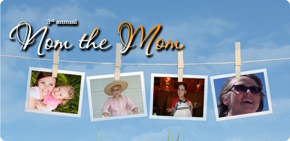 Nom the Mom 2013 finalists blog