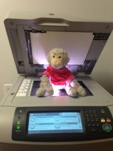 *sigh* Monkey finds the Xerox machine.